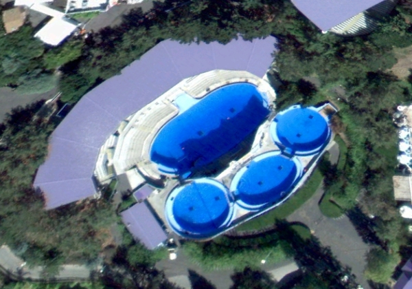 Six Flags- Shouka's pool complex