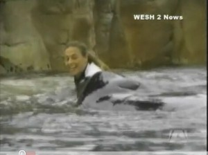 Tilikum with Dawn moments before the attack