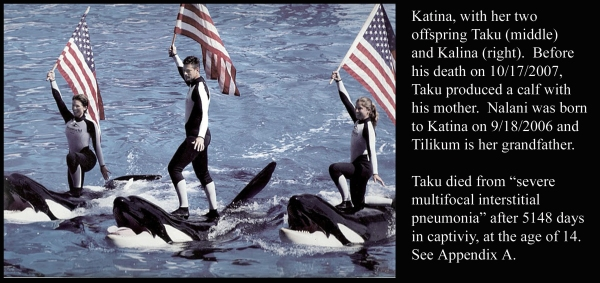 Katina, Taku, Kalina and Flag Bearing Trainers
