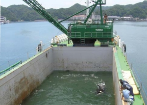 Nami on board a barge for her 23 hour journey from the Taiji Whale Museum to Port of Nagoya Public Aquarium in June, 2010.