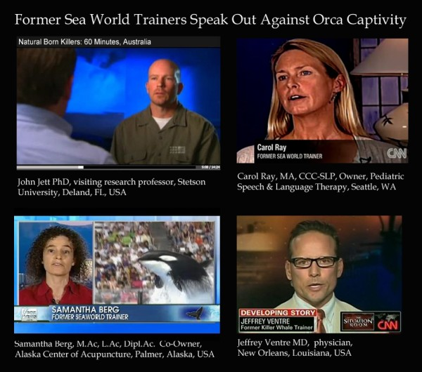 Former SeaWorld trainers continue to come forward and speak out against orca captivity