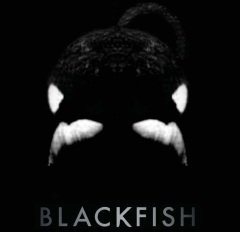 Documentary film BLACKFISH