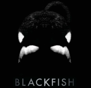 BLACKFISH on CNN